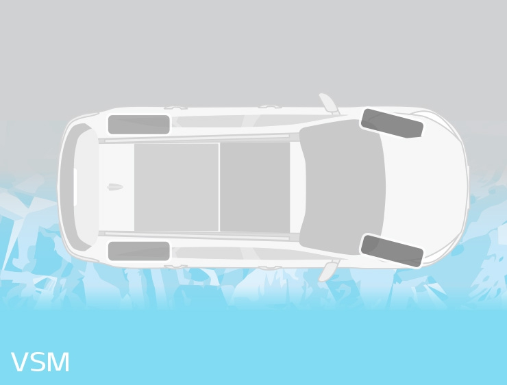 Vehicle Stability Management (VSM)